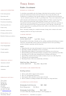 Tracy Jones Sales Assistant Template