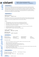 Michael Parker Sales Assistant Template