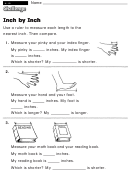 Inch By Inch - Challenge Worksheet With Answer Key