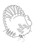 Thanksgiving Turkey Coloring Sheet