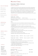 Personal Summary Template - Insurance Sales Advisor
