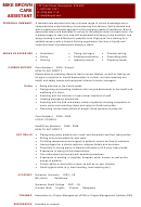Personal Summary Template - Care Assistant - Job Cv