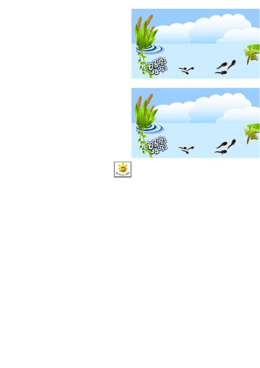 Frog Life Cycle Border Template For Displays Printable pdf