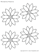Coloring Template - Poinsettia Flowers