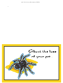 Pet Spider Sorry For Your Loss Pet Sympathy Card Template