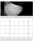Blank Manta Ray Monthly Calendar Template