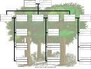 Arbol Genealogico Con Primos