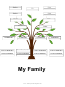 4 Generation Family Tree With Siblings