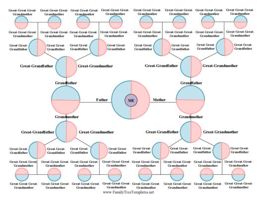 Brainstorm Family Tree Template Printable pdf