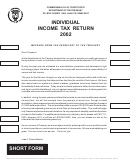 Individual Income Tax Return - Puerto Rico Department Of The Treasury - 2002