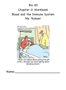 Workbook Blood And The Immune System
