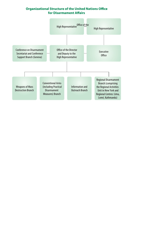 Organizational Structure Of The United Nations Office For Disarmament Affairs Printable pdf