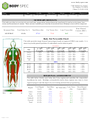 Body Fat Percentile Chart