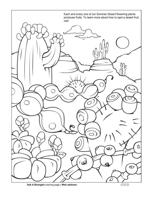 Sonoran Desert Flowers Coloring Sheet
