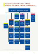 Organizational Chart Of The United Nations Office At Geneva