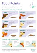 Dog Poop Chart