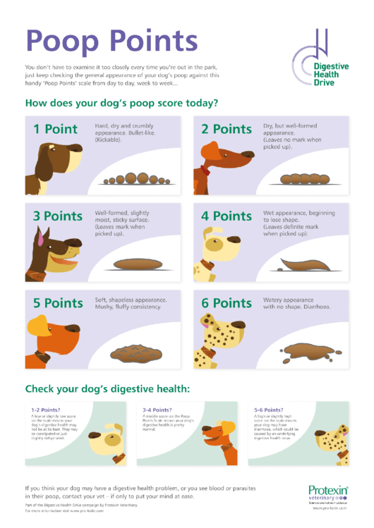 Dog Poop Chart Printable Pdf Download