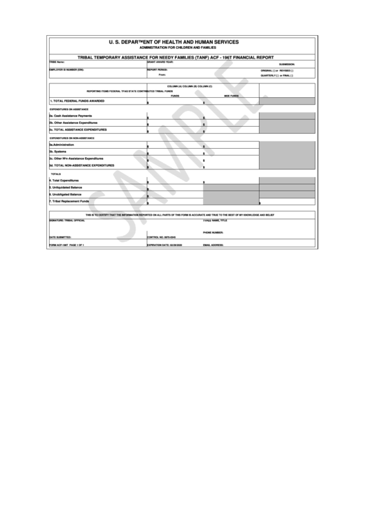Form Acf-196t - Administration For Children And Families - U. S. Department Of Health And Human Services Printable pdf