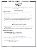 Form P - Profit Corporation Articles Of Incorporation