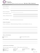 Business Plan Summary Template
