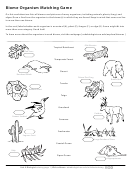 Biome Organism Matching Game - Biology Worksheet