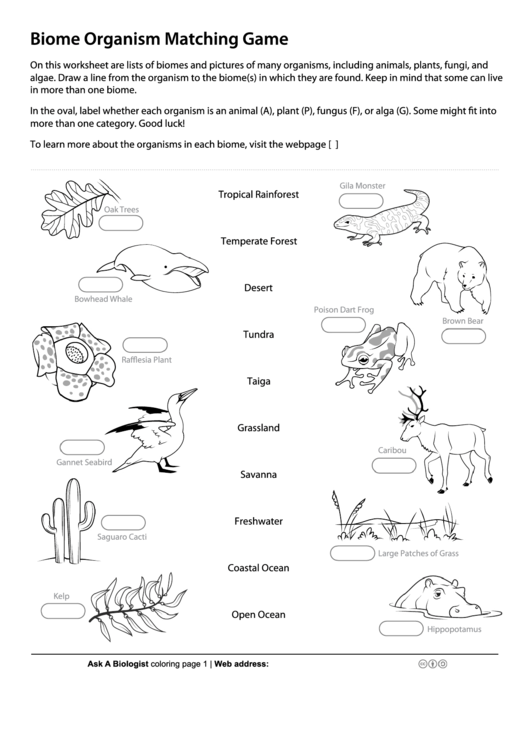 Biome Organism Matching Game - Biology Worksheet Printable pdf