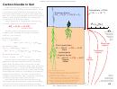 Carbon Dioxide In Soil