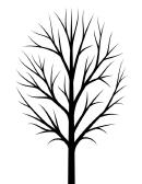Bare Fall Tree Template