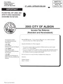 Income Tax Returns(resident And Nonresident) - City Of Albion, Michigan - 2003