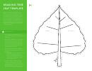 Reading Tree Leaf Template
