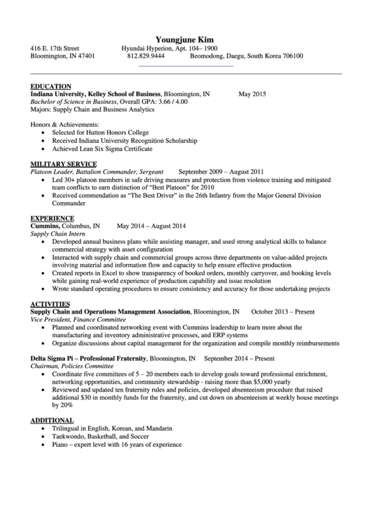 Professional Resume Template Printable pdf