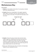 Dichotomous Key Botanics Worksheet