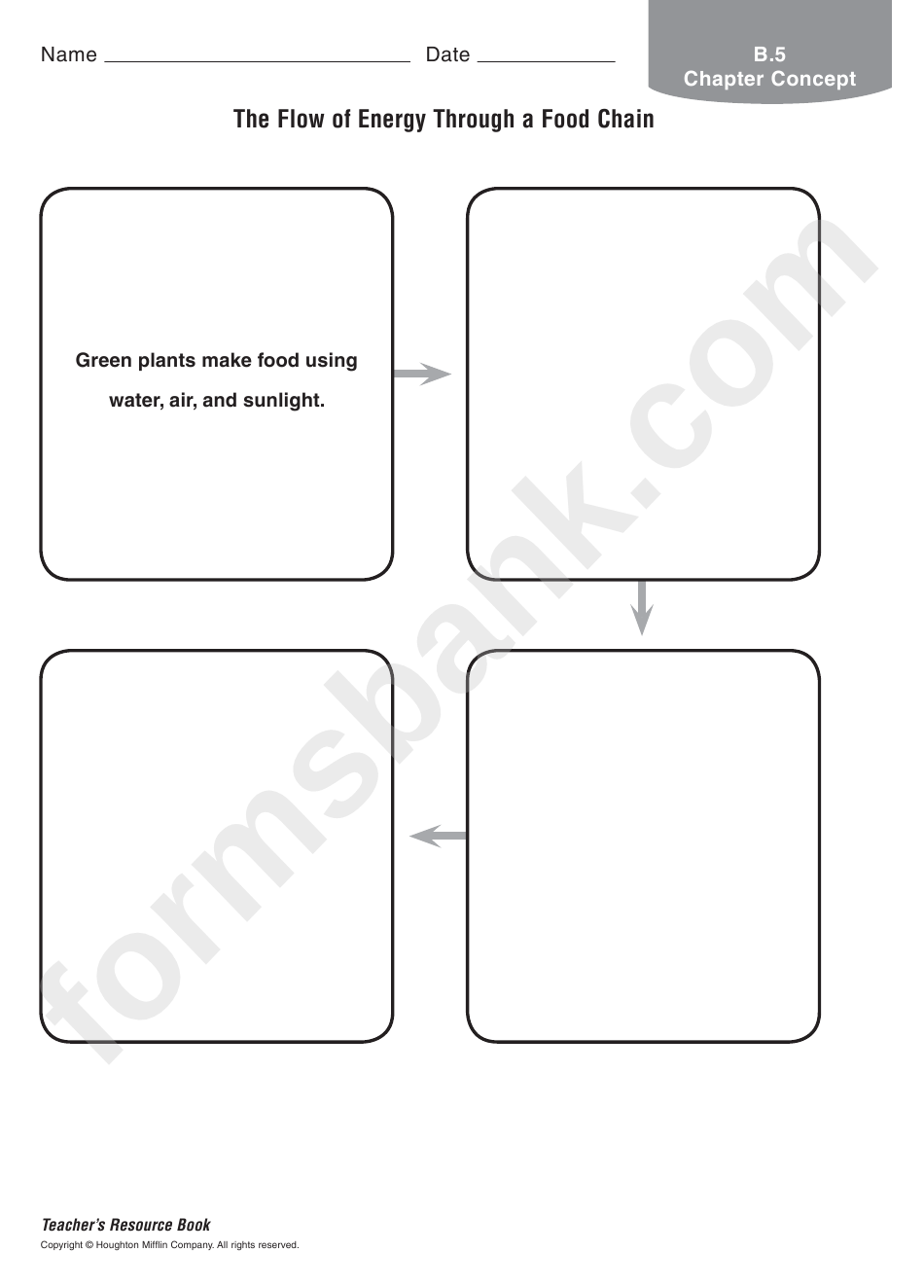 The Flow Of Energy Through A Food Chain Worksheet Printable Pdf Download