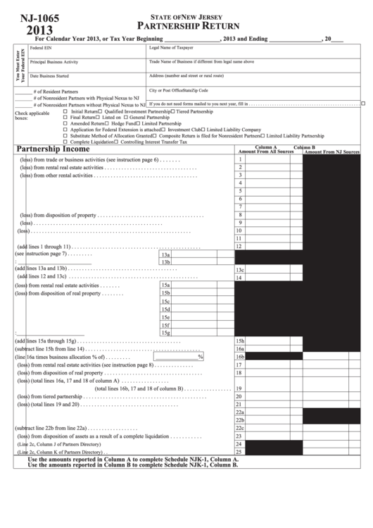 llc tax return form 1065 instructions