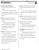 Vocabulary - Plant Parts