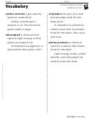Vocabulary - Plant Needs