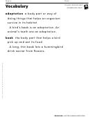 Vocabulary - Animal Adaptations