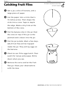Catching Fruit Flies Life Cycles Activity Sheet