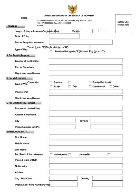 fillable indonesia visa application form printable pdf