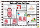 Teeth And Eating Fact Sheet