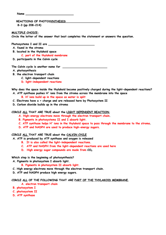Top 8 Photosynthesis Worksheet Templates Free To Download In Pdf Format