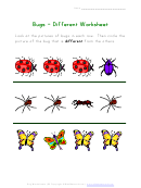 Different Bugs Kids Activity Sheet