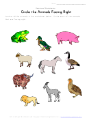 Circle The Animals Facing Right Relational Worksheet