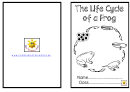 Life Cycle Of Frog Activity Sheet