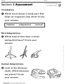 Animal Adaptations Organisms Assessment Sheet