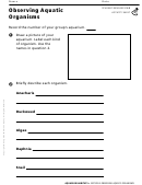 Observing Aquatic Organisms Biology Worksheet