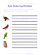 Birds Handwriting Worksheet