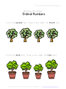 Ordinal Number Worksheet
