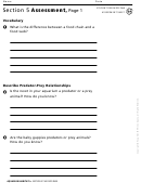 Section 5 Assessment The Food Web Biology Worksheet