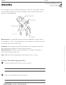 Amoeba Biology Worksheet
